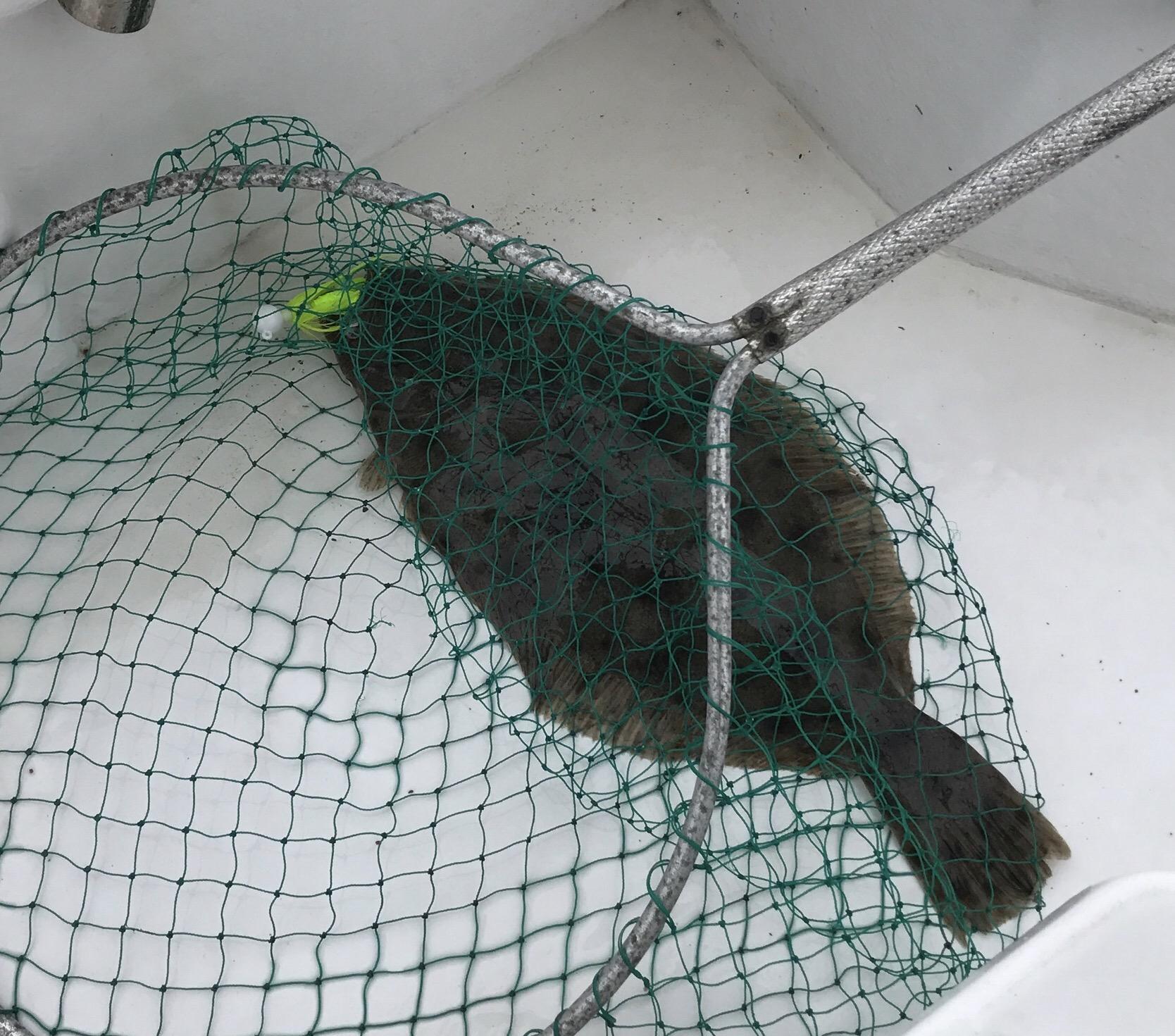 Fishing Net Mesh Bag Green Fish Bag Cage Tackle Fishing Landing Tackle NJ