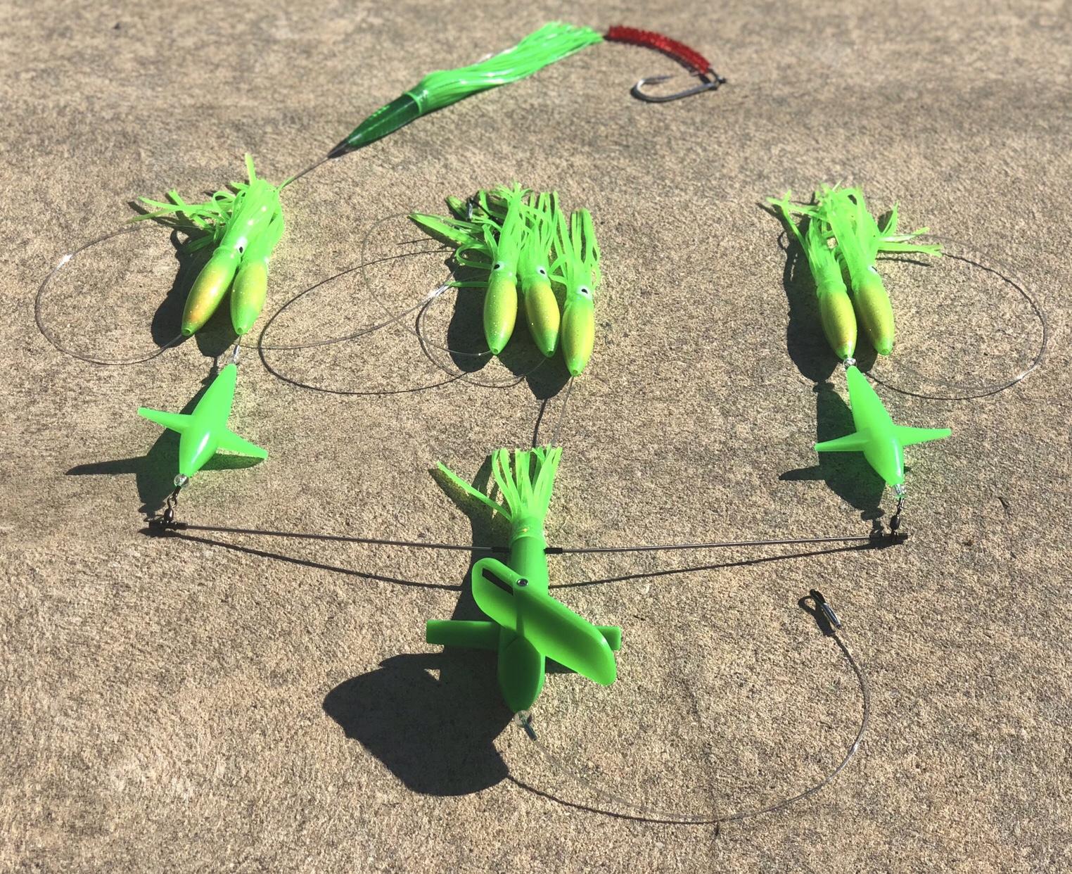 Lbi Fishing Report Update June 15 2018 Nj Origami Nut Spring