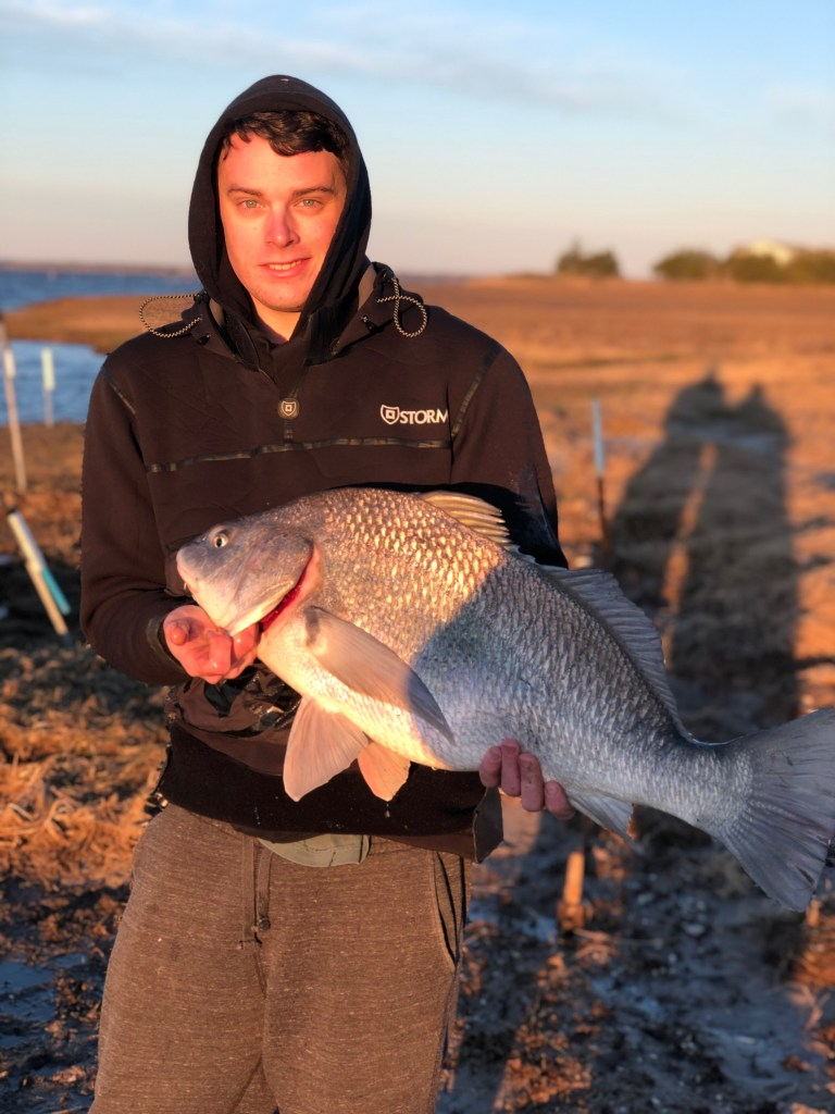 Matteo Delmonico caught this black drum fishing golden hour Tuesday (4-16-19) morning on clam.