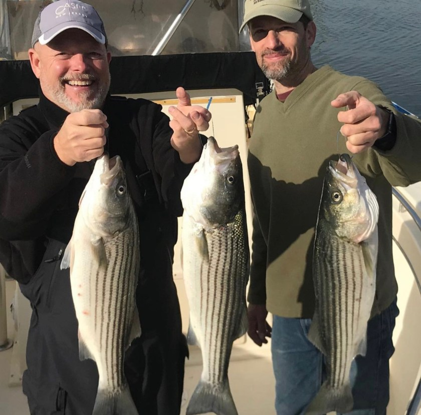 Here are some bonus tag striped bass that were caught aboard Reel Fantasea with Captain Steve Purul during the later portion of the fall.
