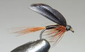 The Twilight Beauty is a traditional wet fly. Wet Fly Fishing calls for great touch. It is more demanding than the dry fly. These flies can be used all season but my best results have been early season.