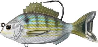 Pinfish