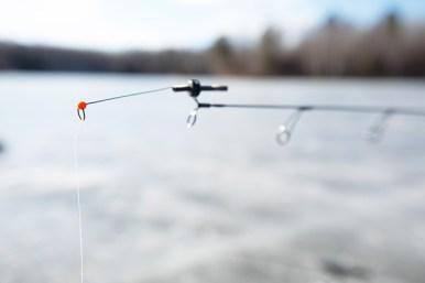 blackicefishing
