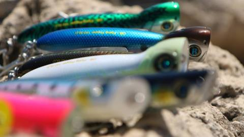 A Band of Anglers Acquires SpoolTek