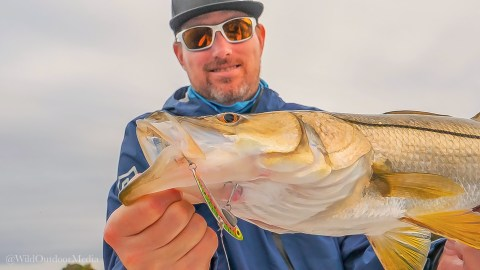SteelShad Announces Innovative Product Lineup for 2020