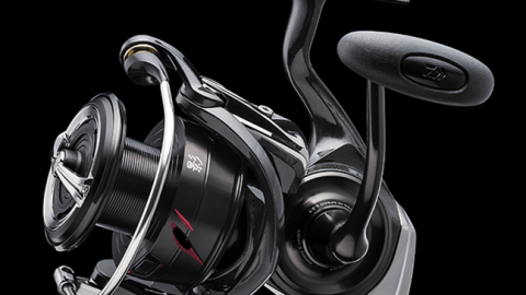 Daiwa Deluxe Spinning Reel Family Now Available