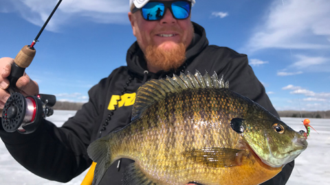 Northland's Top Ice Fishing Baits for Winter Panfish