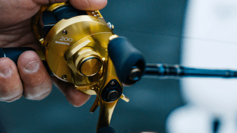 Shimano Brings Infinity Drive to New Calcutta Conquest