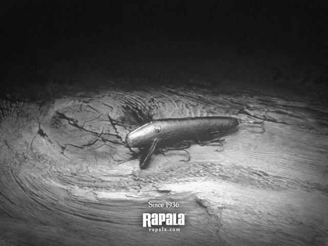 rap001