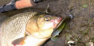 fishingthai