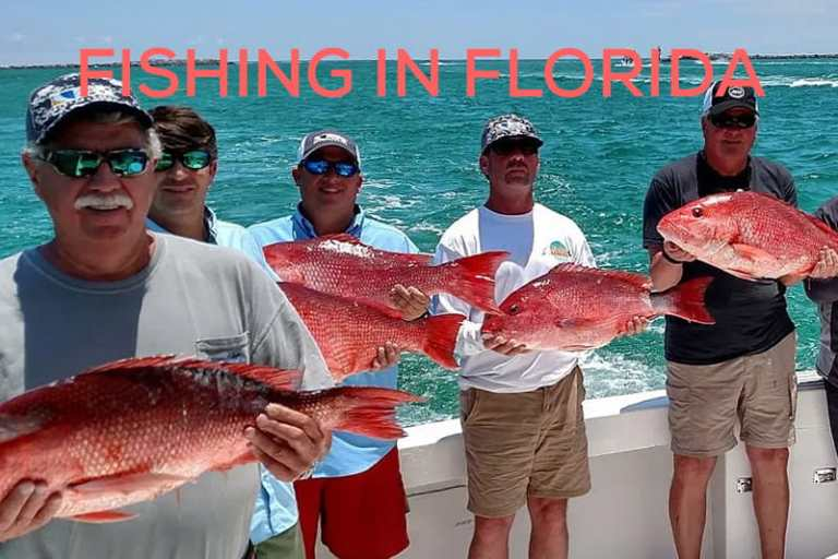 Fishing in Florida – The Best Fishing Tips