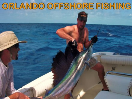 Orlando Offshore Sailfish