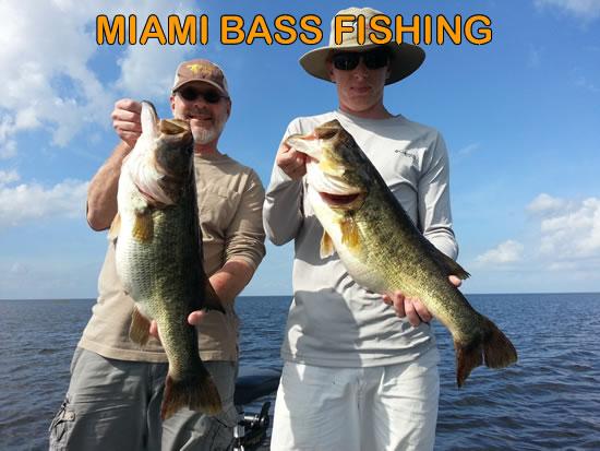 Miami Bass Fishing