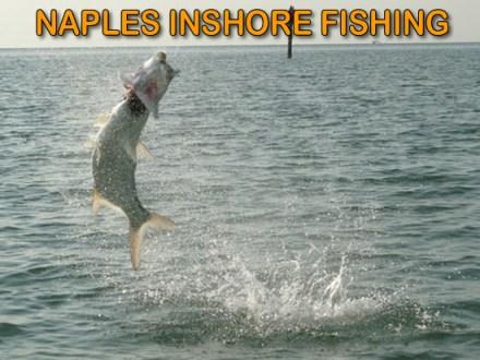 Naples Inshore Fishing