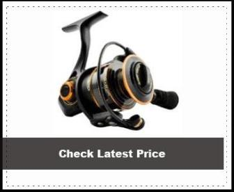 Penn Clash Spinning Reel Review