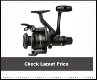 Shimano Spin Reel Clam Review