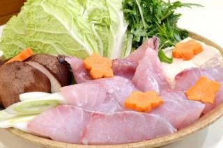 最近は関東でも出回る超旨い高級魚ハタ(羽太)類のまとめ