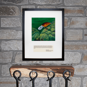 Randy Howell Livingston Crankbait Wall Art