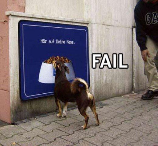 fail-dogfood