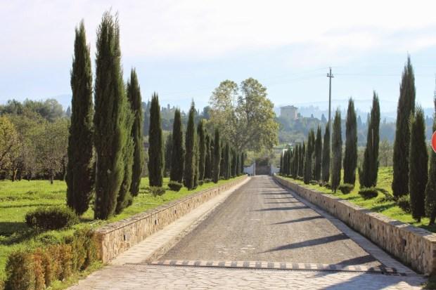 Villa Tolomei - Driveway