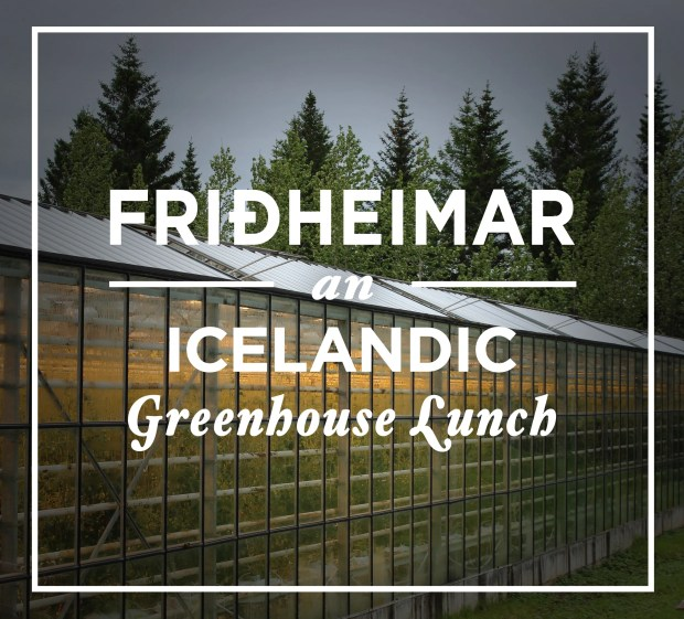 An Icelandic Greenhouse Lunch
