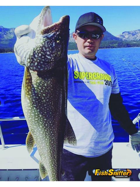 California Lake Report