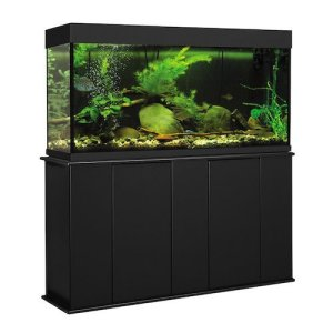 aquatic fundamentals upright aquarium stand m