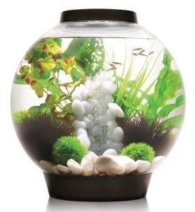biorb classic aquarium m