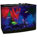 tetra glofish aquarium kit