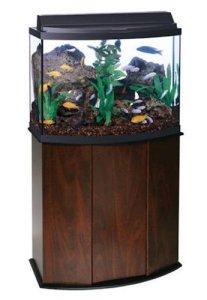 aqueon 36 gallon deluxe aquarium kit with stand