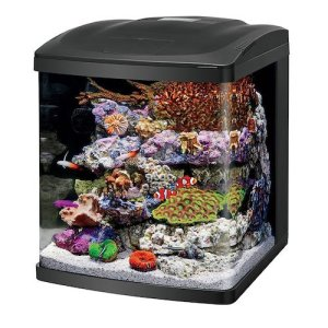 coralife fish tank led biocube aquarium starter kits 16 gallon