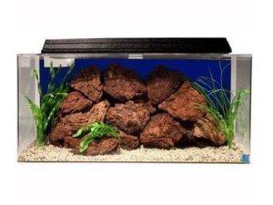 seaclear 50 gallon system ii acrylic aquarium