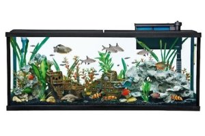 top fin essentials aquarium starter kit 55 gallon