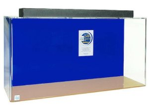 acrylic rectangle aquarium 60 gallon blue