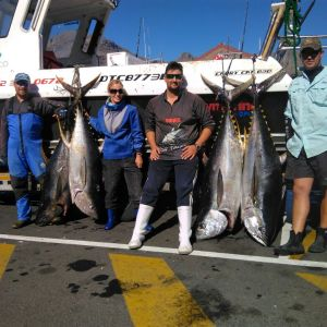 Tuna Fishing Charter Cape Town