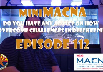 Episode 112 - miniMACNA - Do you have any advice on how to overcome challenges in reefkeeping?
