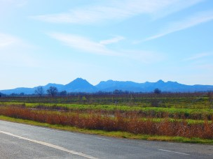 The Sutter Buttes on a clear winter day.