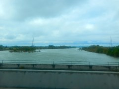 The rain swollen Feather River.
