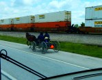 ...'til this trip. These folks were just trotting along in their horse and wagon. A very unusual sight!