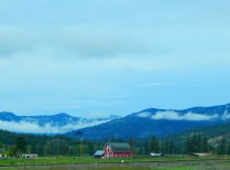 More Montana beauty.