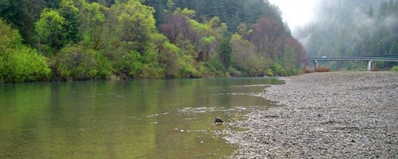 South Fork Eel, just above the