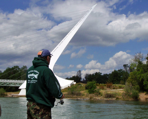 Drifting under the Sundial Bridge in downtown Redding