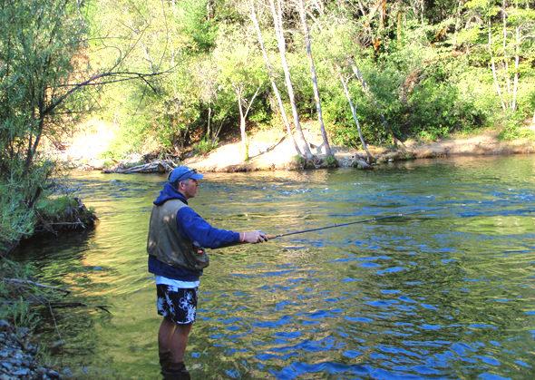 Lewiston salmon steelies more for Trinity river fishing spots