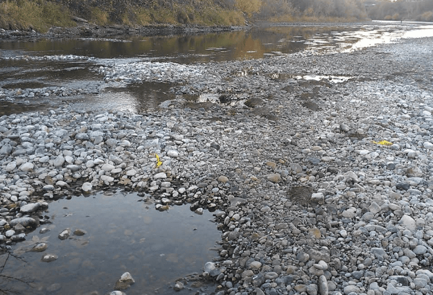 Dewatered Salmon Redd