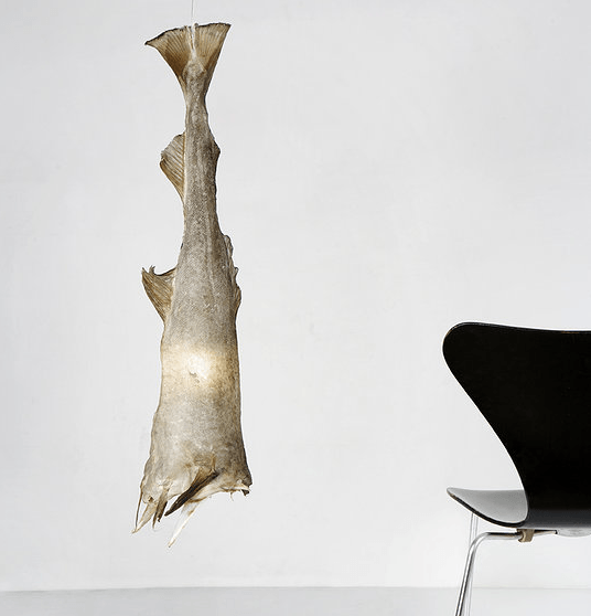 cod lamp
