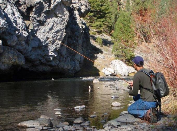 Fishing a stream with jerk baits
