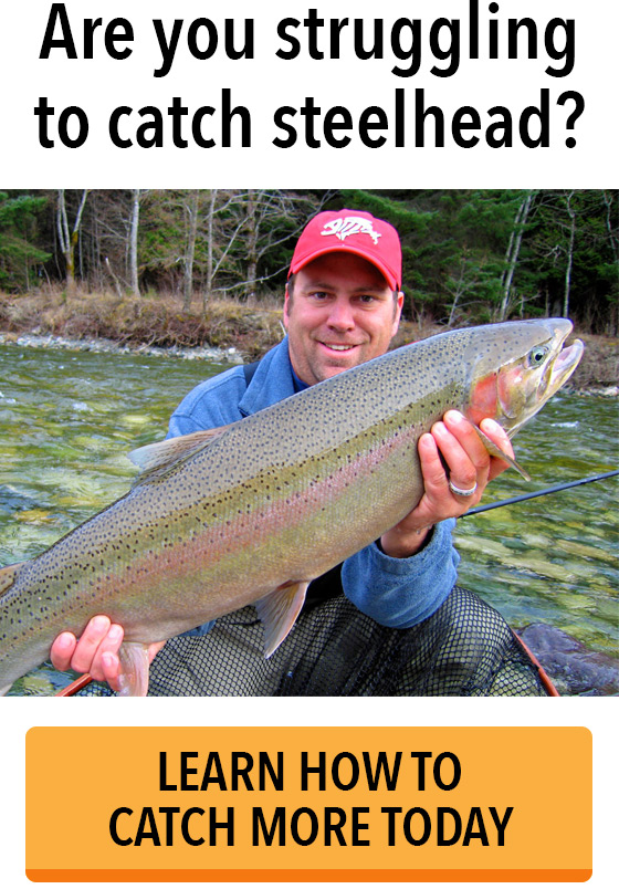 Catch More Steelhead