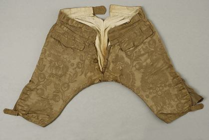 'breeches', British, (silk, cotton, leather), c. 1740, Metropolitan Museum of Art , New York City, 1981.118.1