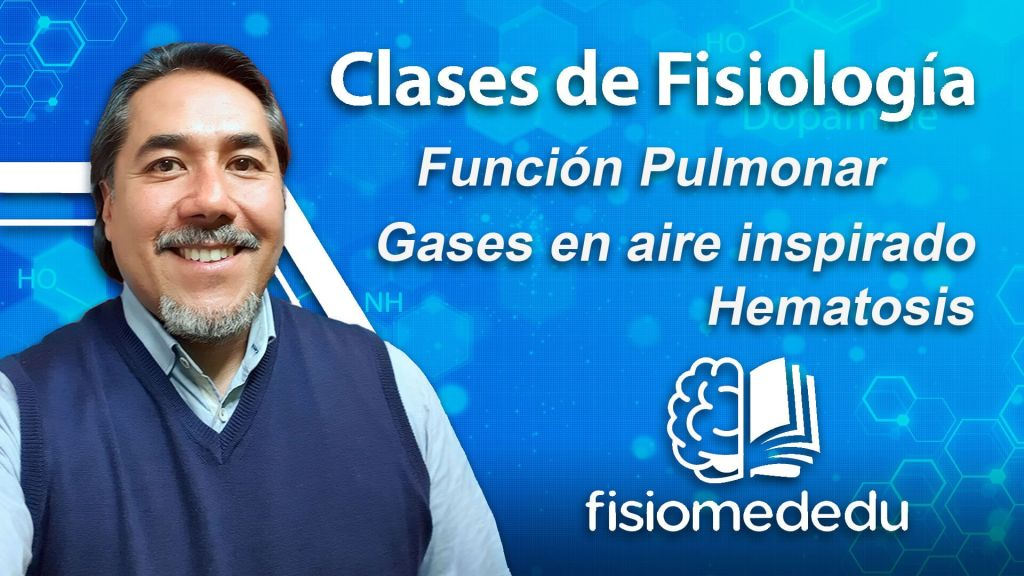 gases respiratorios y hematosis o intercambio gaseoso