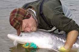 Fiskerejser - Chilliwack - Kærlighed fra Stolle til Stør